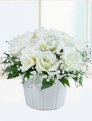 Beyaz Güzellik